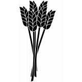 Getreide & Müsli
