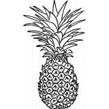 frisches Obst, Früchte & Nüsse