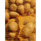 Kartoffeln (Gunda) mehlig