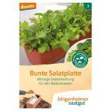 Bunte Salatplatte Saatband