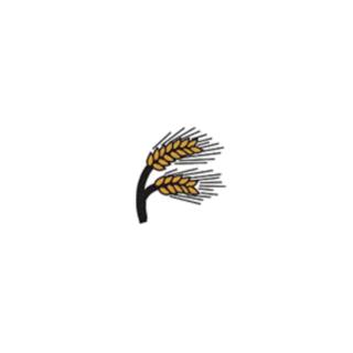 Kräutermix Mediterran im Topf