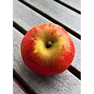 Apfel Cox