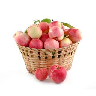 Apfel div. Sorten