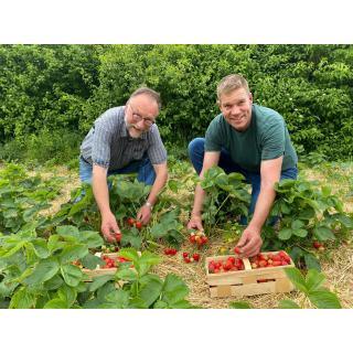 Eier 6 er, Meierhof Etteln