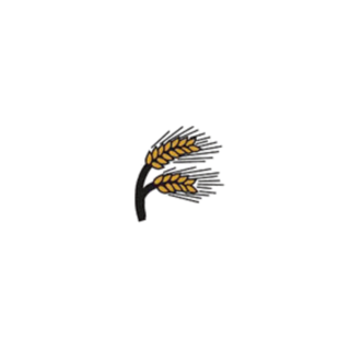 Dinkelbrötchen Sonnenblumenkerne